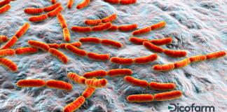 Probiotici e cancro LGG